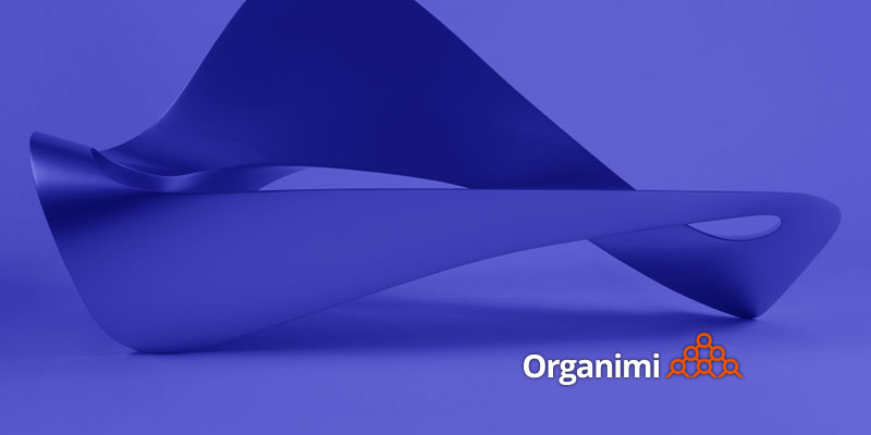 Effective Organizational Design: Defining Form and Function