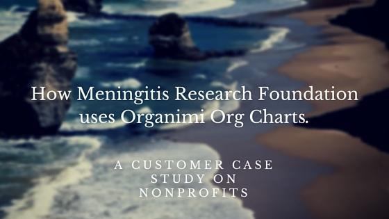 Non Profit Organizational Charts & Organimi