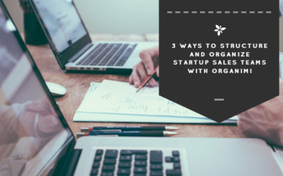 3 Ways to Structure and Organize Startup Sales Teams with Organimi