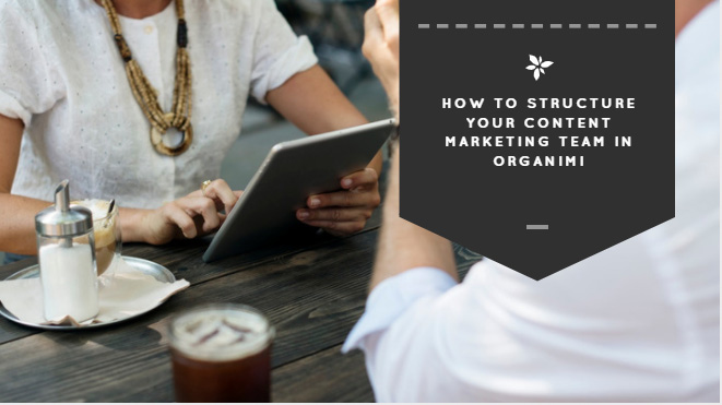 How to Structure Your Content Marketing Team in Organimi