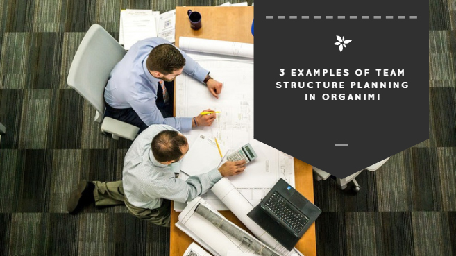 3 Examples of Team Structure Planning in Organimi