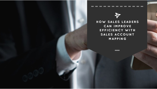 How Sales Leaders Can Improve Efficiency with Sales Account Mapping
