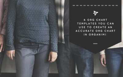 6 Org Chart Templates You Can Use to Create an Accurate Org Chart in Organimi