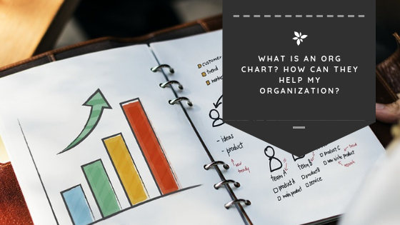 What is an Org Chart? How Can They Help My Organization?