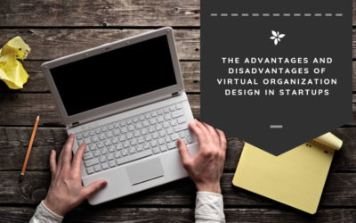The Advantages and Disadvantages of Virtual Organization Design in Startups