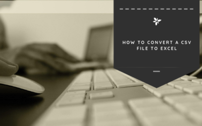 How to Convert a CSV File to Excel