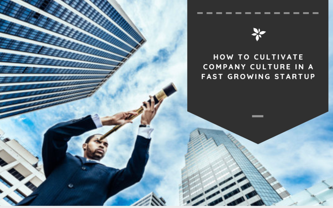 How to Cultivate Startup Culture in a Fast Growing Company