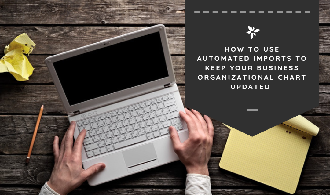 Your Business Org Chart Can Update Automatically