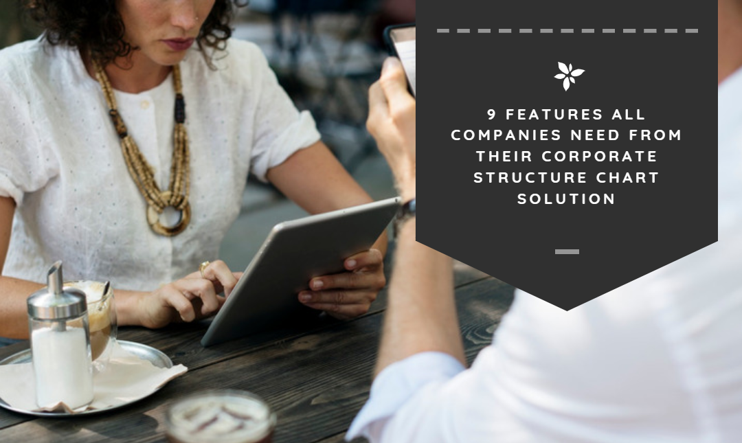 9 Features All Companies Need from Their Corporate Structure Chart Solution