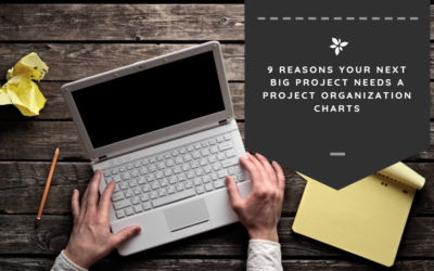 9 Reasons Your Next Big Project Needs a Project Organization Chart