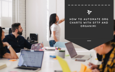 How to Automate Org Charts With sFTP and Organimi