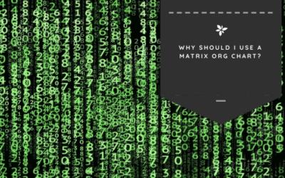 Why Should I Use a Matrix Org Chart?