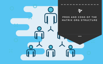 Pros and Cons of the Matrix Org Structure