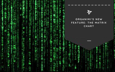 Organimi's New Feature: The Matrix Chart