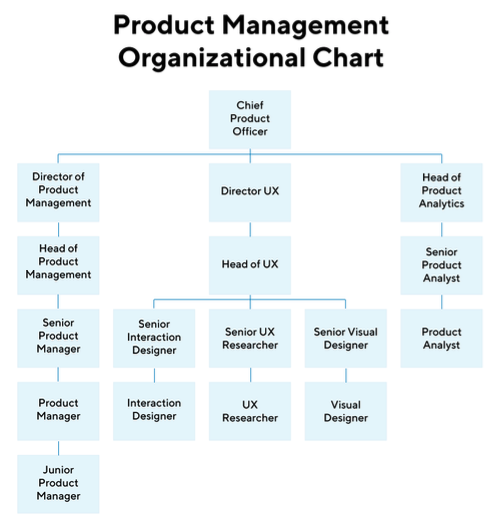 An example of a product management organizational chart.
