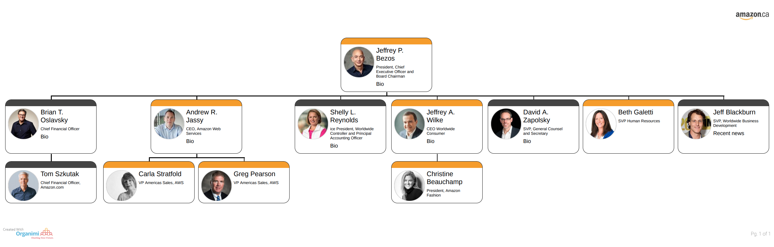 Amazon's Organizational Structure