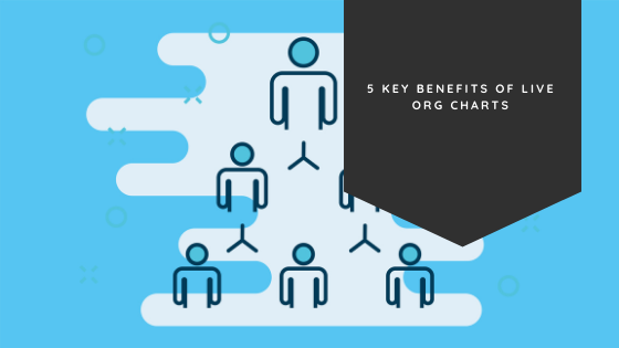 5 Key Benefits of Live Org Charts