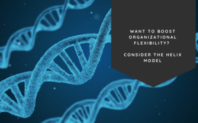 Want to Boost Organizational Flexibility? Consider the Helix Model