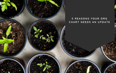 5 Reasons Your Org Chart Needs An Update