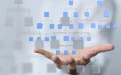 Hierarchical vs Flat Organizational Structure [with Pros & Cons]
