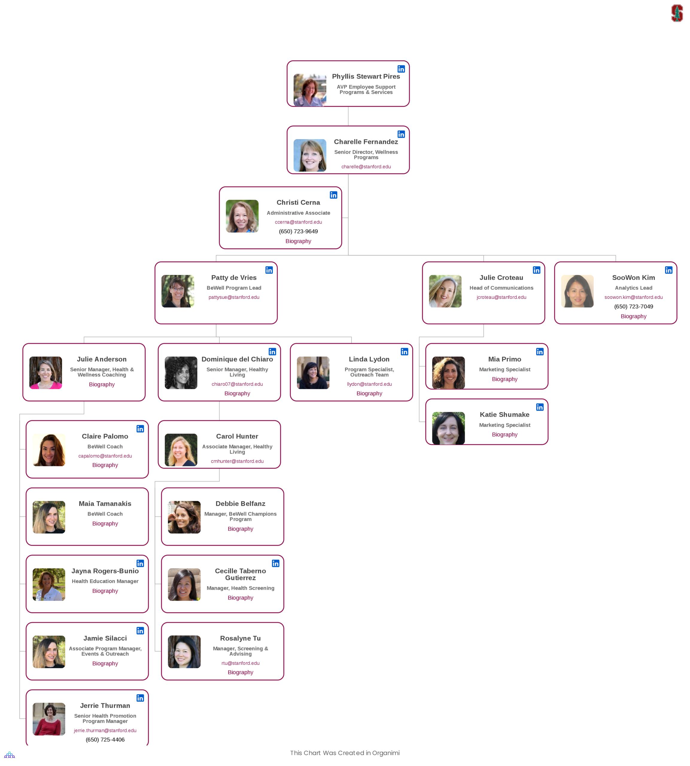 Stanford's Organizational Structure